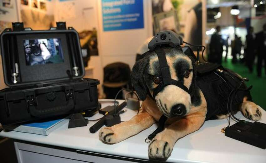 A dummy dog with a surveillance camera on his forehead and the monitor are displayed during the INDESEC Expo 2010 - Homeland Security show at the Pragati Maidan exhibition centre in New Delhi on September 6, 2010.