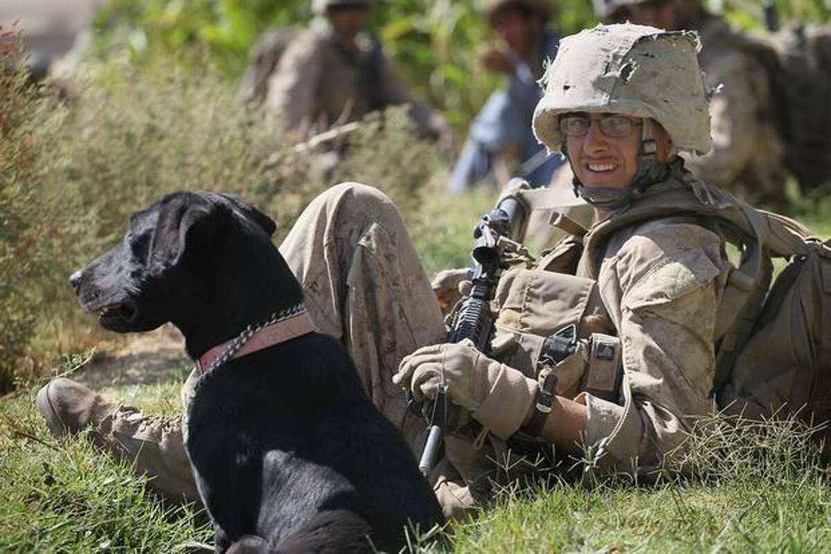 Marine Cpl. Jonathan Eckert, of Oak Lawn, Ill., attached to India Battery, 3rd Battalion, 12th Marine Regiment, rests with his improvised explosive device sniffing dog, Bee, during a patrol near Forward Operating Base Zeebrugge on October 10, 2010 in Kajaki, Afghanistan.