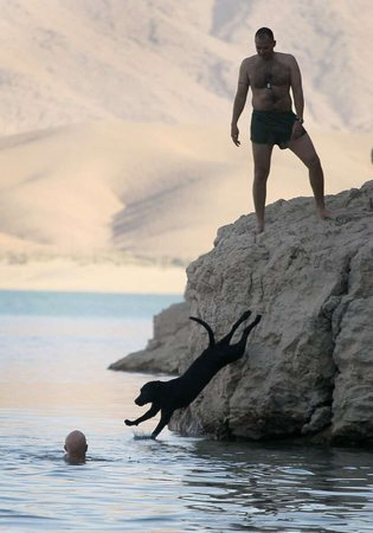 Marines with India Battery, 3rd Battalion, 12th Marine Regiment and their improvised explosive device sniffing dog go for a swim in the reservoir above the Kajaki dam during a break in action at Forward Operating Base Zeebrugge on October 12, 2010 in Kajaki, Afghanistan.