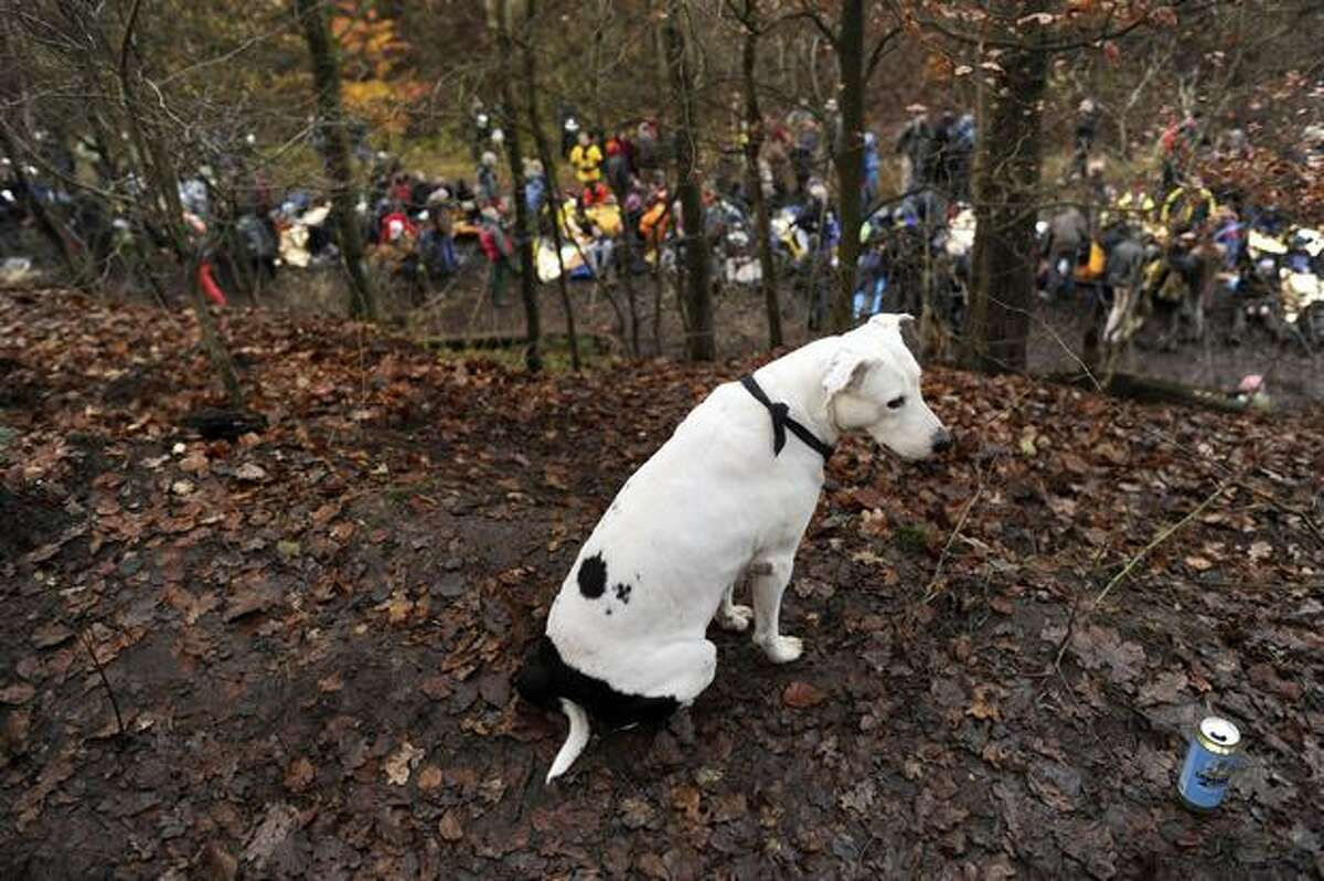 A dog sits next to a can of beer overlooking protestors against the Castor transport and storage of nuclear waste sitting on the train tracks during a blockade near Harlingen, Germany on November 7, 2010. Police clashed with activists trying to halt a train carrying nuclear waste from France to Germany as protests against the shipment turned increasingly violent.