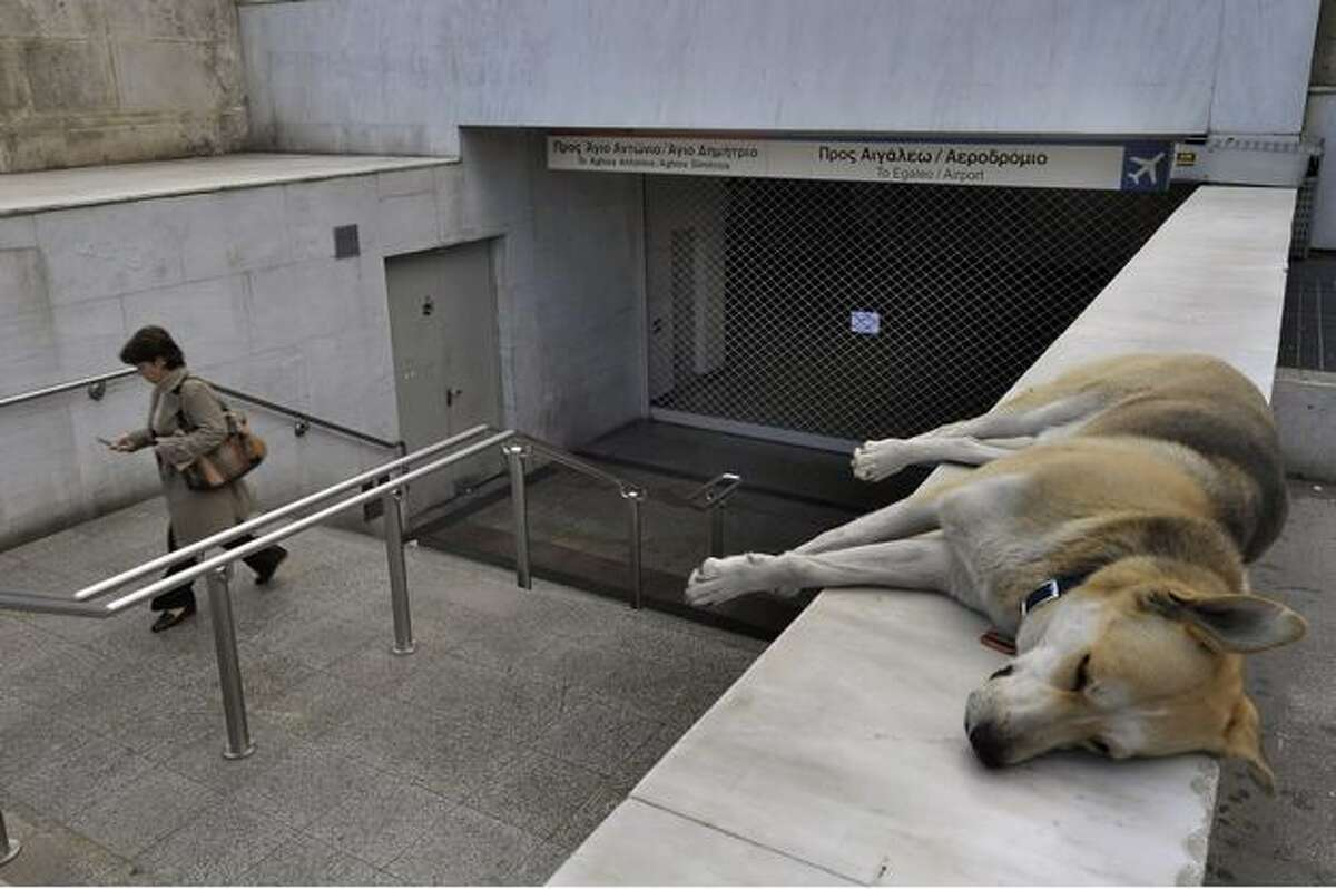A dog sleeps near the entrance of the Athens underground metro station, closed due to the 24-hours strike on Friday, March 5.