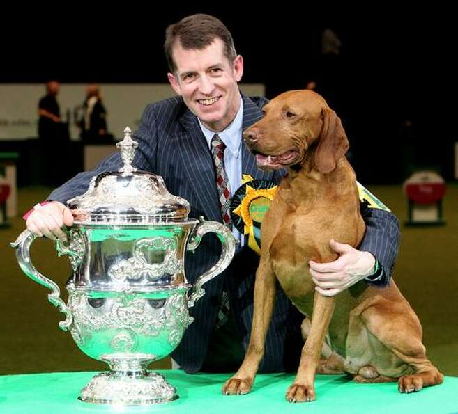 Yogi the Hungarian Vizsla and handler John Thirwell celebrate after winning 'Best in Show' at the 20