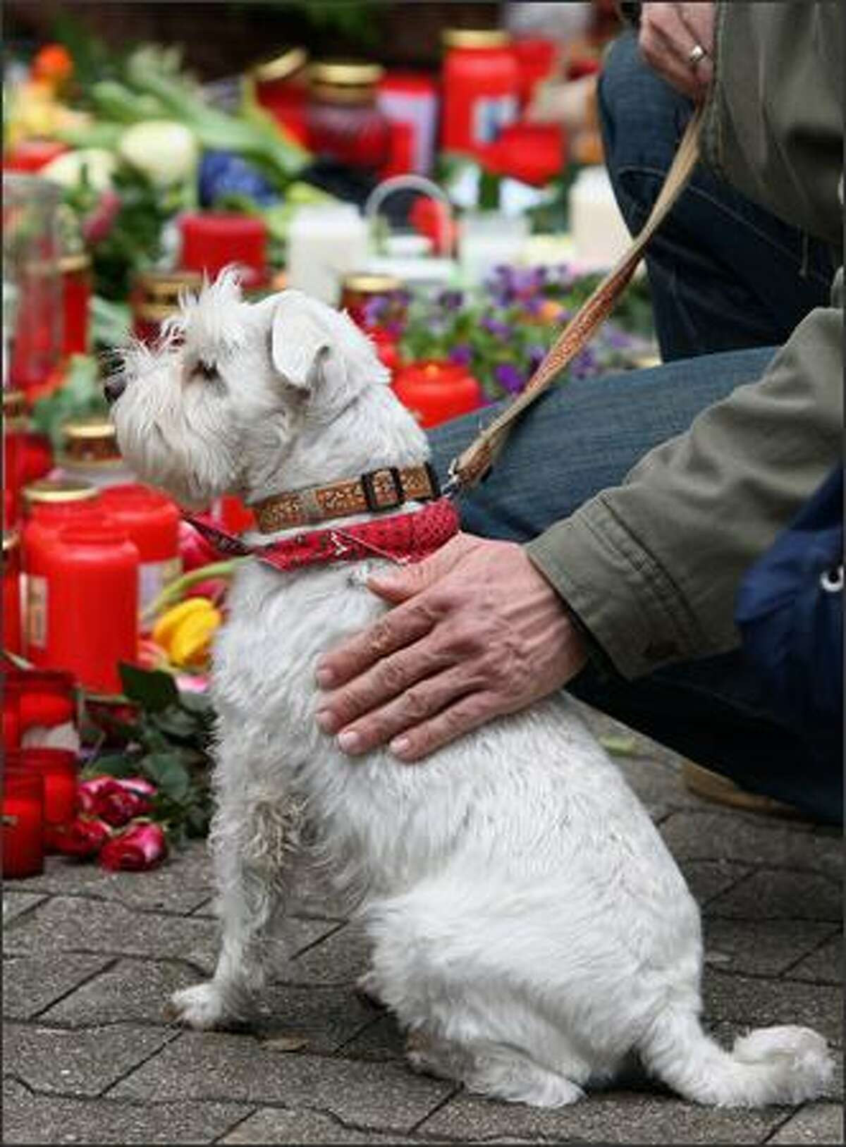 A man pets a dog in front of candles and flowers at the Albertville School Centre in Winnenden near Stuttgart, Germany.