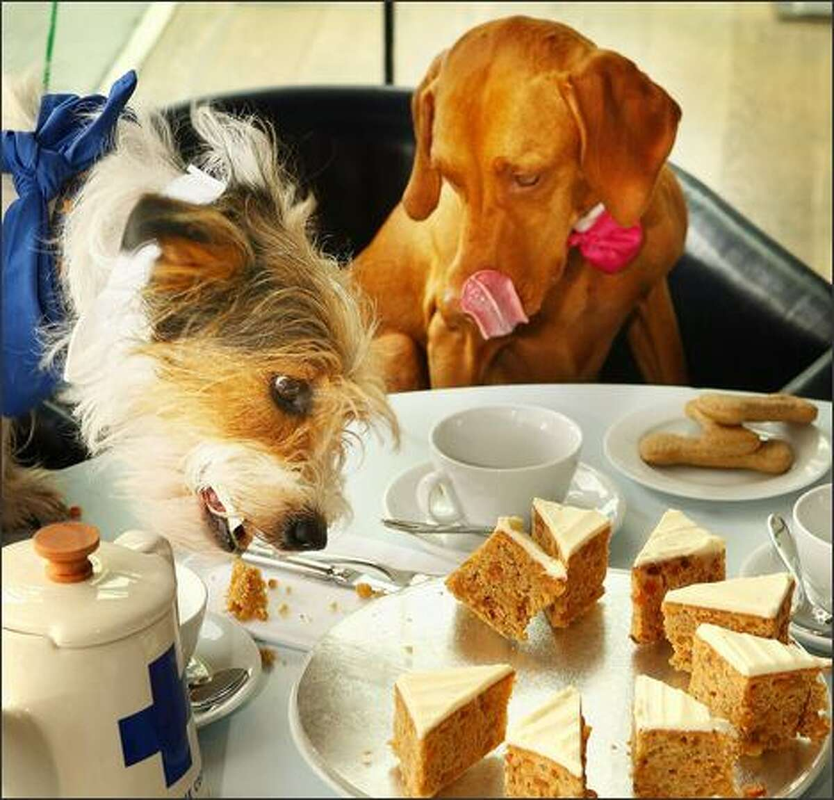 Romi (right) watches Freddy eat some cake during a tea party in the Oxo Tower restaurant in London.