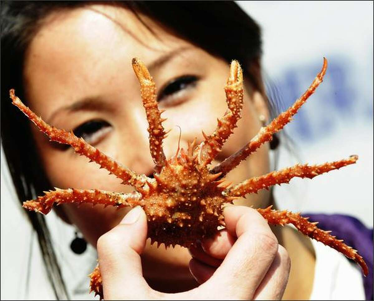 A woman holds up a crab after arriving at the aquarium in the northern German town of Cuxhaven.