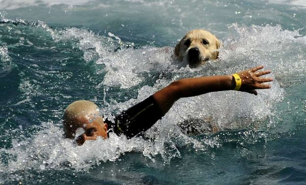 A labrador dog trained for rescue at sea swims with his instructor during a patrol at Riva dei Tarquini in the Tyrrhenian Sea about 100kms north of Rome. This summer, Italy discovered a special squad of rescue workers: some 300 dogs ready to help save lives on dozens of Italian beaches.