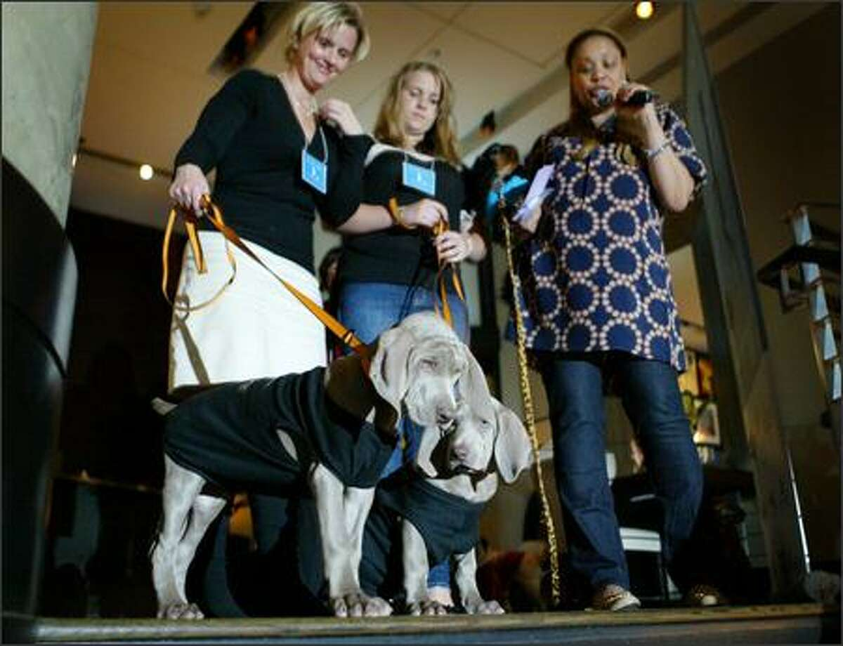 Bella, left, and Izza prepare to walk down the steps in the W Hotel with Tonya Devorchik, left, and Tory Perfect as petiquette expert Charlotte Reed introduces the dogs and their companions.