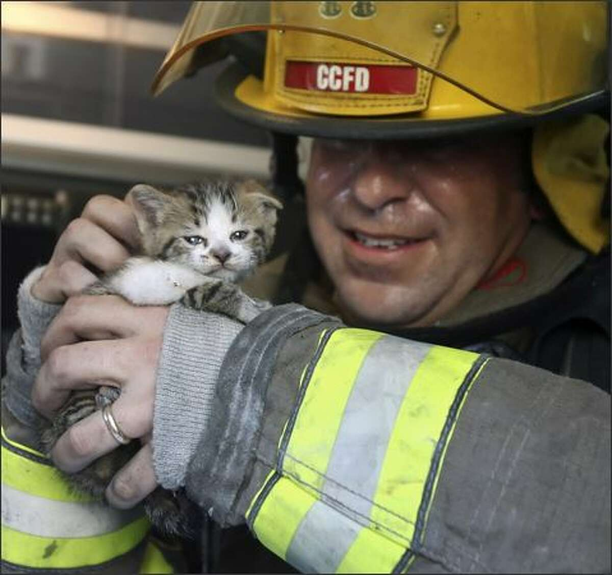 Corpus Christi Fire Department Captain John Leahey examines one of two cats rescued from a small duplex fire, in Corpus Christi, Texas. The kitten had minor injuries, including singed whiskers. (AP Photo/Corpus Christi Caller-Times, Rachel Denny Clow)
