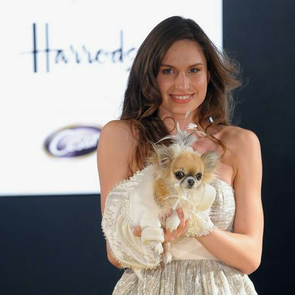 A model walks down the catwalk with a dog wearing an outfit from the movie 'The Wizard of Oz' during the annual 'Pet-a-Porter' pet fashion show at Harrods in London, England.