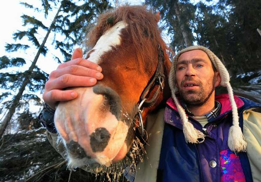 Lumber jack Jozef Buda and his nine year old horse Bubo rest in a forest near the village of Liptovsky Jan in outdoor temperatures at minus ten degrees celsius on Wednesday. Slovakia is characteristic for its large hilly forests where the wood work without the help of specially trained draft horses is virtually impossible.