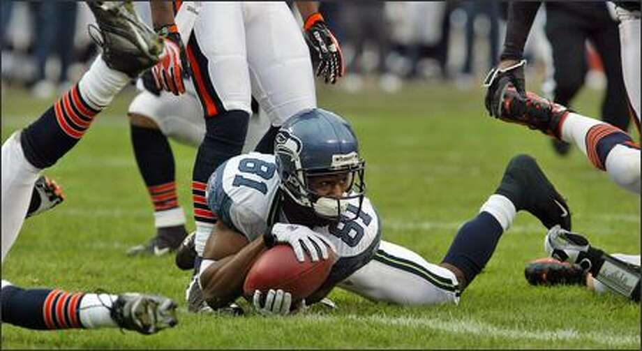Seattle Seahawks wide receiver Nate Burleson (81) looks to see that he did indeed cross the goal line for the Seattle Seahawks first touchdown in the first quarter of play during Divisional Playoffs at Soldier Field. Photo: Mike Urban, Seattle Post-Intelligencer / Seattle Post-Intelligencer