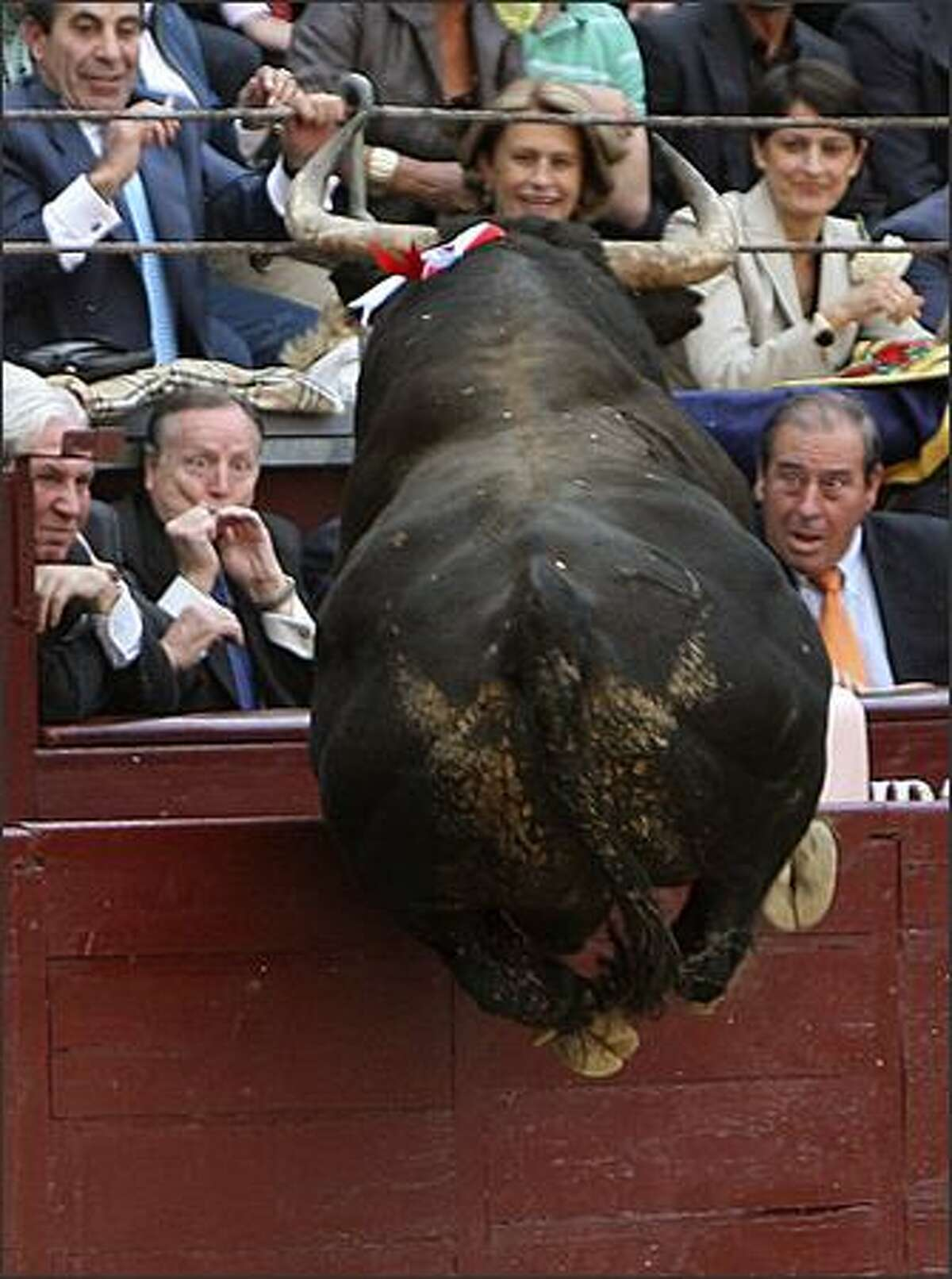 Former Mayor of Madrid Alvarez del Manzano, first row, second left, shows his emotions as a bull jumps over the barrier during a San Isidro bullfight in Madrid. (AP Photo/EFE, J.J. Guillen)