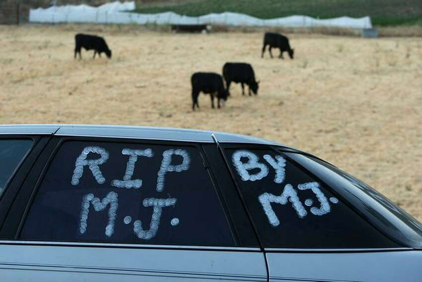 Cattle graze in a field behind a fan's car bearing messages of remembrance along the country road outside the gates of Michael Jackson's Neverland Ranch as fans worldwide continue to mourn the singer's sudden death a week earlier.