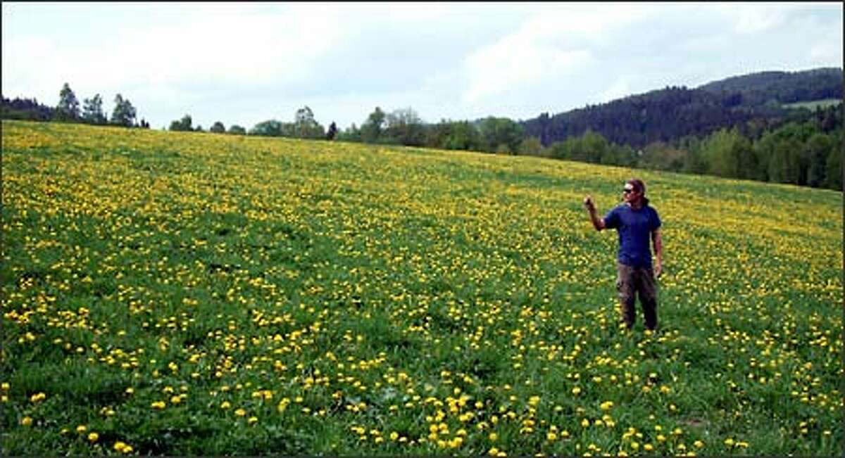 Richie stops to smell the dandelions. During our stay in Cesky Krumlov, Richie and I rented bikes and spent a day pedaling around the Sumava wilderness region south of town. A network of battered-old-roads-turned-bicycle-trails took us through rolling hills of dense forest, wide-open fields and the occasional tucked-away village. It was some of the most gorgeous scenery we'd seen in a long time. And although we got lost a few times during what turned out to be a 50-mile ride, friendly locals were always happy to help us find our way.