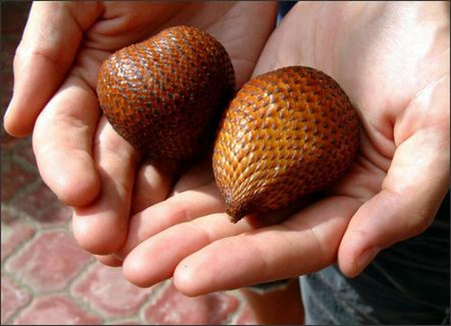 "We bought this ""snake fruit"" from a roadside vendor. The outside is covered in a scaly skin that perfectly matches the skin of its namesake. The inside is a crisp fruit that manages to taste both fruity and nutty at the same time. Photo: Winda Benedetti, Special To Seattle Post-Intelligencer / Special to Seattle Post-Intelligencer"