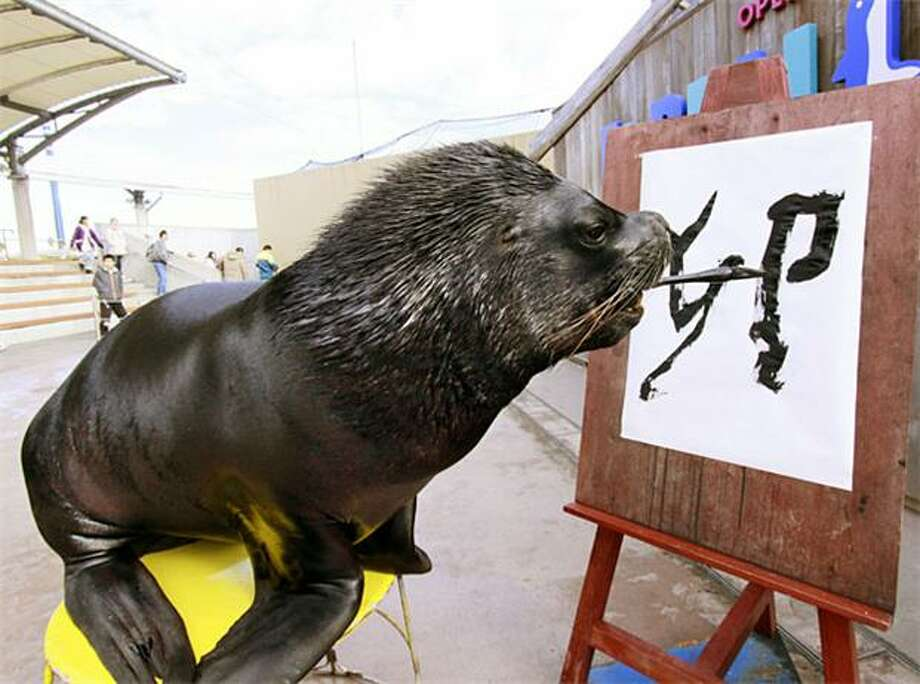 "He's not so special: Sure, Leo can write the word ""rabbit"" in Chinese characters to mark the beginning of the Asian Year of the Rabbit next month. But once you throw out the knowledge of Mandarin and calligraphy, what do you have? Just another sea lion who can paint with his teeth. (Hakkeijima Sea Paradise in Yokohama, Japan.) Photo: Yoshikazu Tsuno, AFP / Getty Images / AFP / Getty Images"