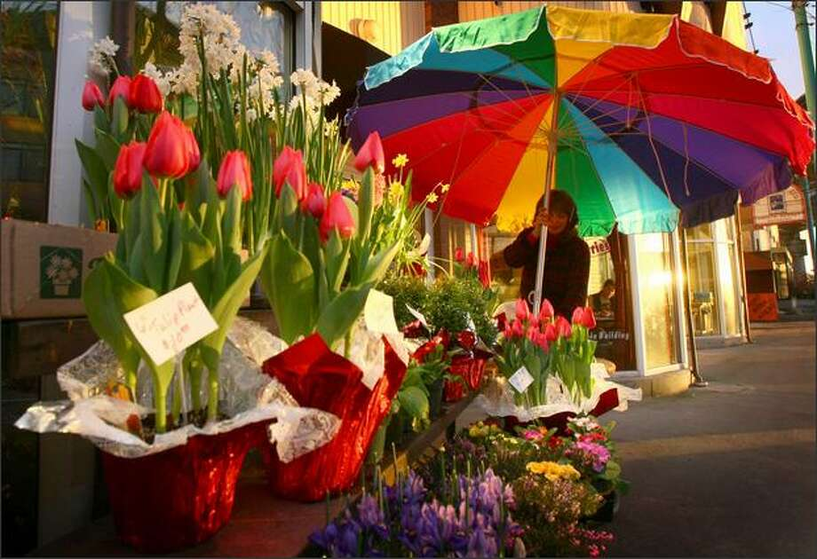 """Last year I worked a 63 hour day; with a 20-minute nap,"" said The Flower Lady, Vivian Darst, while arranging the display in front of her shop, The Flower Lady. ""Its a very last minute holiday,"" said Elissa Kamins who also works at the shop. Photo: Joshua Trujillo, Seattlepi.com / seattlepi.com"