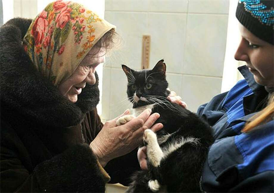 Want to be my kitty? An elderly Belarusian tries to make a new friend at a shelter for homeless cats in Minsk. Photo: Viktor Drachev, AFP / Getty Images / AFP / Getty Images