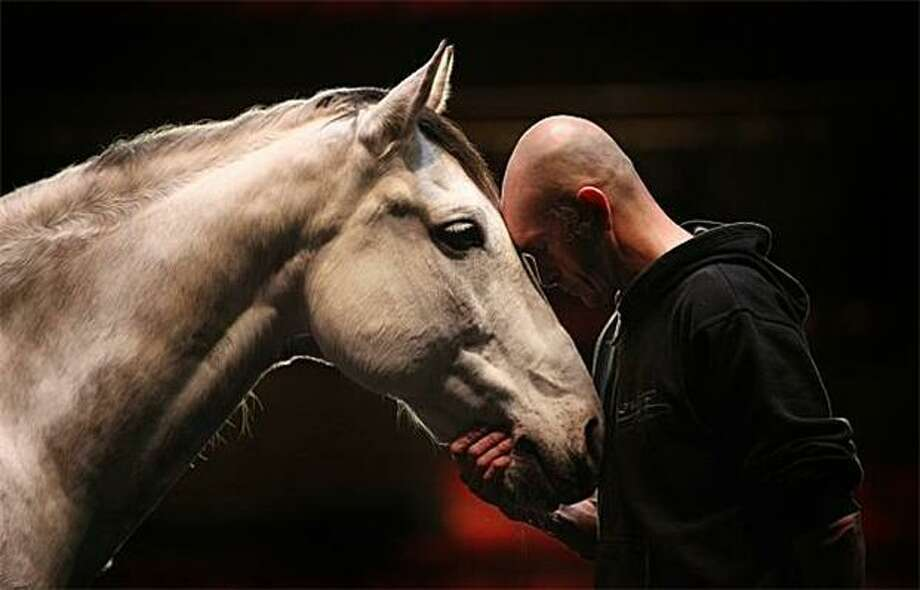 "Mind meld:Horse trainer and equestrian showman Bartabas tries to get in the head of 12-year-old Le Tintoret on stage at Sadler's Wells Theatre in London. Bartabas performs with four horses during ""The Centaur and the Animal,"" which explores the interaction between man and horse during dressage. Photo: Peter Macdiarmid, Getty Images / Getty Images"