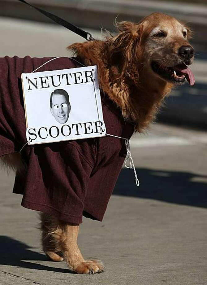 Proposed fix for Wisconsin's budget woes:At a pro-state union rally in Madison, a golden retriever recommends a medical procedure for Gov. Scott Walker. It supposedly could cure him of negative behaviors such as marking his territory, barking at collective bargaining and provoking fights with Democrats. Photo: Justin Sullivan, Getty Images / Getty Images