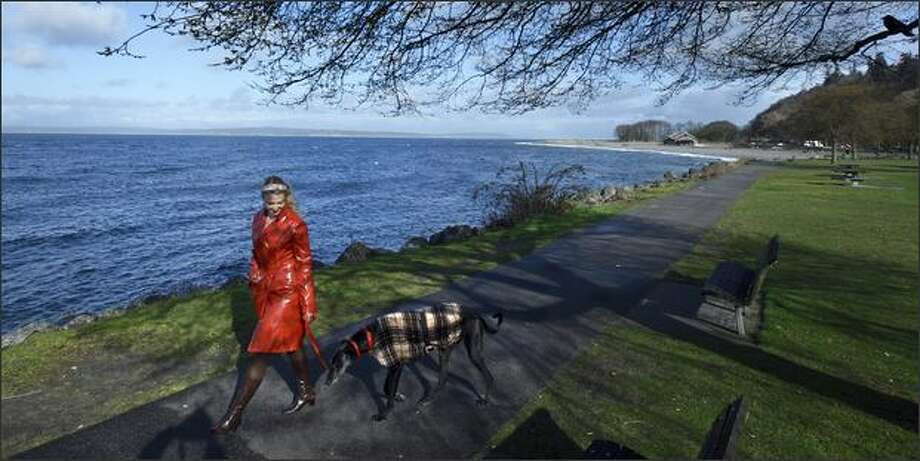 Sherrie Heginbotham of Ballard enjoys the springlike weather by walking her former racing greyhound, Rufus, along Shilshole Bay Marina and Golden Gardens Park in Seattle. Photo: Andy Rogers, Seattle Post-Intelligencer / Seattle Post-Intelligencer