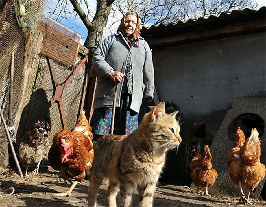 Life in the radiation zone:In the largely abandoned Ukrainian village of Paryshiv, not far from the Chernobyl nuclear plant, Maria Semenyuk tends to her hens. She is among about 300 people who returned to live within the 30-kilometer exclusion zone following the 1986 meltdown. Photo: Sergei Supinsky, AFP / Getty Images / AFP / Getty Images