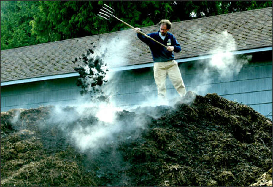 "Dan Corum, the compost/recycling coordinator for Woodland Park Zoo who is better known as ""Dr. Doo,"" tosses manure as he stands on a pile of compost that the zoo is aging. The compost is so ""poopular,"" Corum says, that people who want to buy it need to take part in a lottery. Photo: Grant M. Haller, Seattle Post-Intelligencer / Seattle Post-Intelligencer"