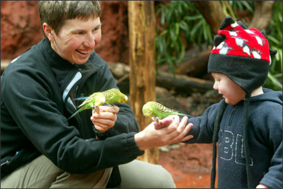 Katerina Weinfurt introduces her son, Adam, 16 months, to three parakeets at Woodland Park Zoo's Willawong Station on Monday. About 150 free-flying, brightly colored birds inhabit the exhibit, and visitors can buy a $1 seed stick to feed them. The exhibit is open daily from 9:30 a.m. to 5 p.m. Photo: Grant M. Haller, Seattle Post-Intelligencer / Grant M. Haller