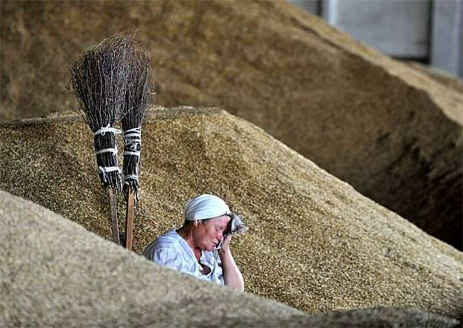 A farm worker wipes her brow while harvesting wheat in Yurievo, Belarus. Photo: Viktor Drachev, AFP / Getty Images / AFP / Getty Images
