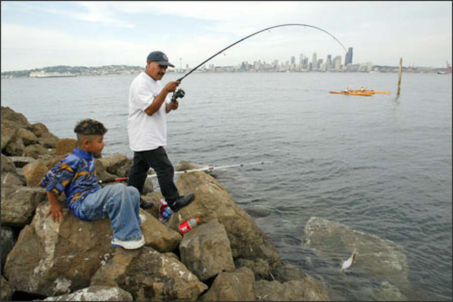 With the city skyline in view, Liborio Brito and his son Eric fish for bottomfish off the rocks near Seacrest Marina Park on Elliott Bay. The pair, who live in Kent, say they often come to the park to try their luck, but Monday was a slow day on the water and the fishermen caught only this flounder, which they had to release. Better luck next time. Photo: Gilbert W. Arias, Seattle Post-Intelligencer / Seattle Post-Intelligencer
