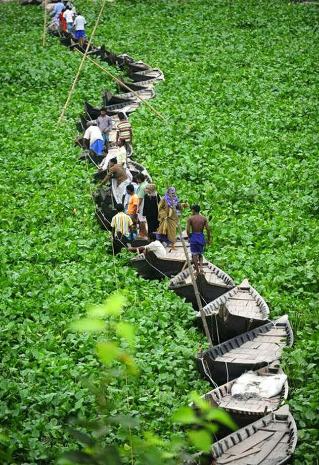 Channel surfing:Bangladeshi commuters gingerly cross a bridge made of boats in the water hyacinth-clogged Buriganga River in Dhaka. Photo: Munir Uz Zaman, AFP / Getty Images / AFP / Getty Images