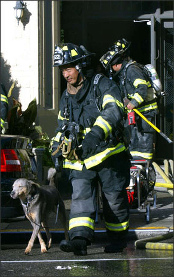 A Seattle firefighter escorts a dog from the Roosevelt apartments on Capitol Hill after a fire forced residents to flee Tuesday. Firefighters were called to the three-story apartment building at 1729 12th Ave. just past 8 a.m., spokeswoman Helen Fitzpatrick said. The fire, in a first-floor apartment, spread upward and eventually damaged five units. Two residents were treated at the scene for minor smoke inhalation, one firefighter cut his hand, and a pet cat died in the blaze. The fire was blamed on a candle left burning in a bathroom. Damage was estimated at $300,000. Photo: Karen Ducey, Seattle Post-Intelligencer / Seattle Post-Intelligencer