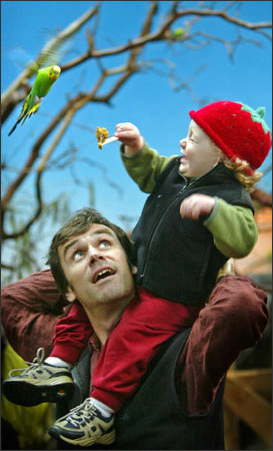 Randy Gladwish holds his son Owen, 20 months, up to feed a hungry bird at Woodland Park Zoo's aviary. Photo: Joshua Trujillo, Seattlepi.com / Seattle Post-Intelligencer