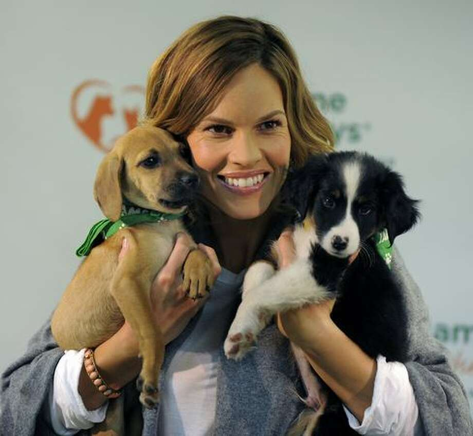 "Two-time Academy Award winning actress Hilary Swank poses with two puppies at the Bideawee Animal Center, Monday, to raise awareness for the Iams ""Home 4 the Holidays"" pet adoption drive. Swank serves as ambassador for Iams and the campaign runs from October 1 to Jan 4, 2010. Photo: Getty Images / Getty Images"