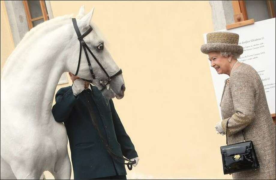HM Queen Elizabeth II is presented with a Lipica horse called Kanizo during a tour of the Lipica farm on the second day of a two day tour of Slovenia on Wednesday in Ljubljana, Slovenia. Photo: Getty Images / Getty Images