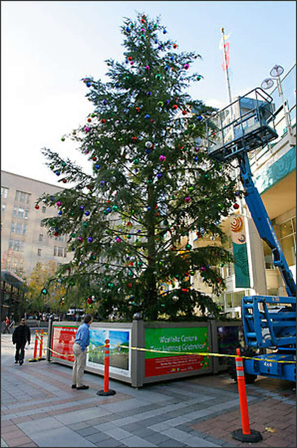 Workers on Tuesday add ornamentation -- and a few extra boughs -- to a 60-foot Christmas tree being erected in downtown Seattle's Westlake Plaza.  The scraggly tree has drawn criticism. Photo: Seattle Post-Intelligencer / Seattle Post-Intelligencer