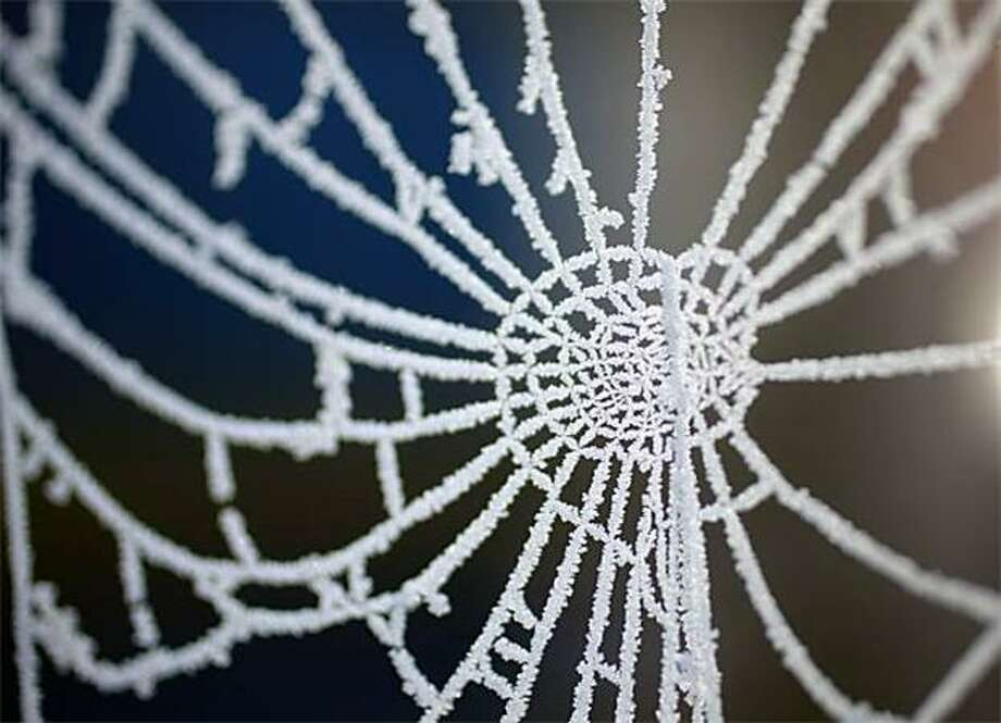 Hello, doily:Hoarfrost turns a spider's web into silver lace at Pickmere Lake in Knutsford, United Kingdom. Photo: Christopher Furlong, Getty Images / Getty Images