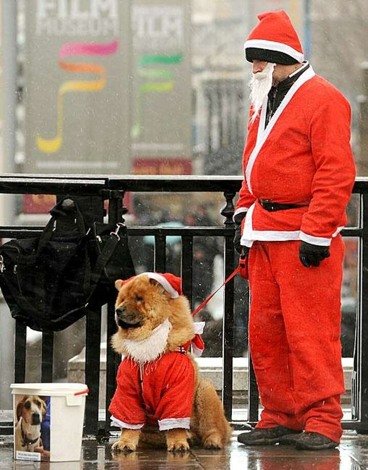 Spare change for chow? Santa Paws and a helper collect donations for an animal charity in London. Photo: Ben Stansall, AFP / Getty Images / AFP / Getty Images