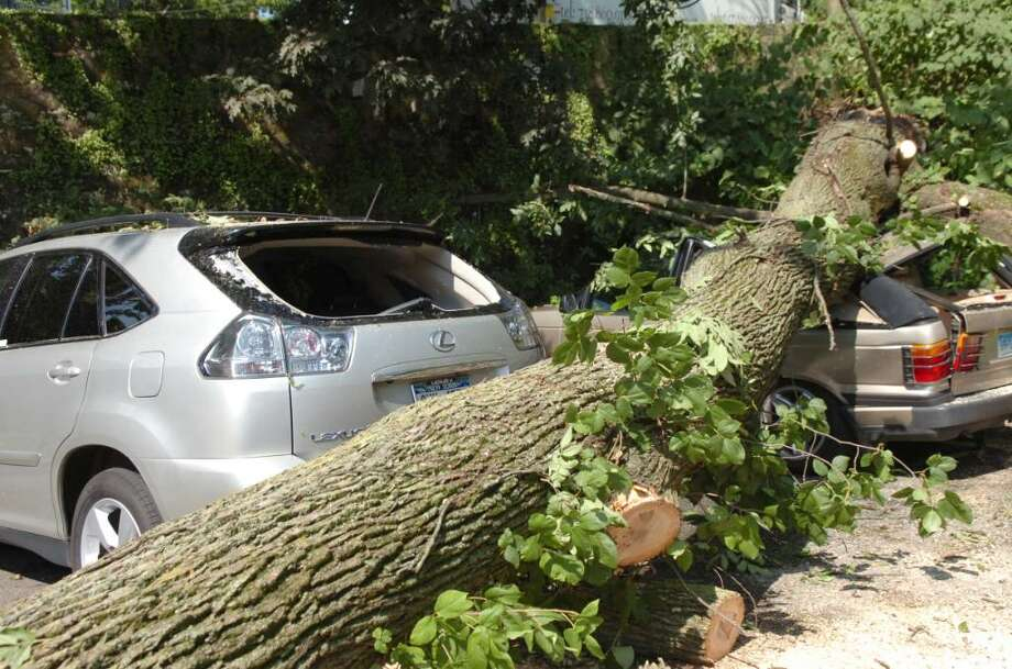 Greenwich_081109_Two cars were damaged in the storm,  when a tree fell on them in a parking lot on Arch Street. Central was hit by hard wind and lightning last night.  Helen Neafsey/staff photo Photo: Helen Neafsey/staff Photo / 00010502A