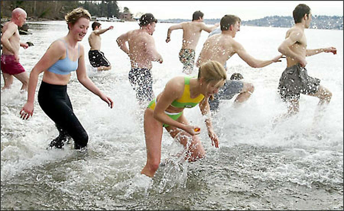 Just after noon Tuesday, about 30 students, staff and faculty from Bastyr University in Kenmore braved the chilly waters of Lake Washington as part of the school's 6-year-old traditional Splash and Dash. Student Kristin Foreman, center, stops to pick up a rubber duck on the way in, winning a couple of pairs of HotHands hand warmers.
