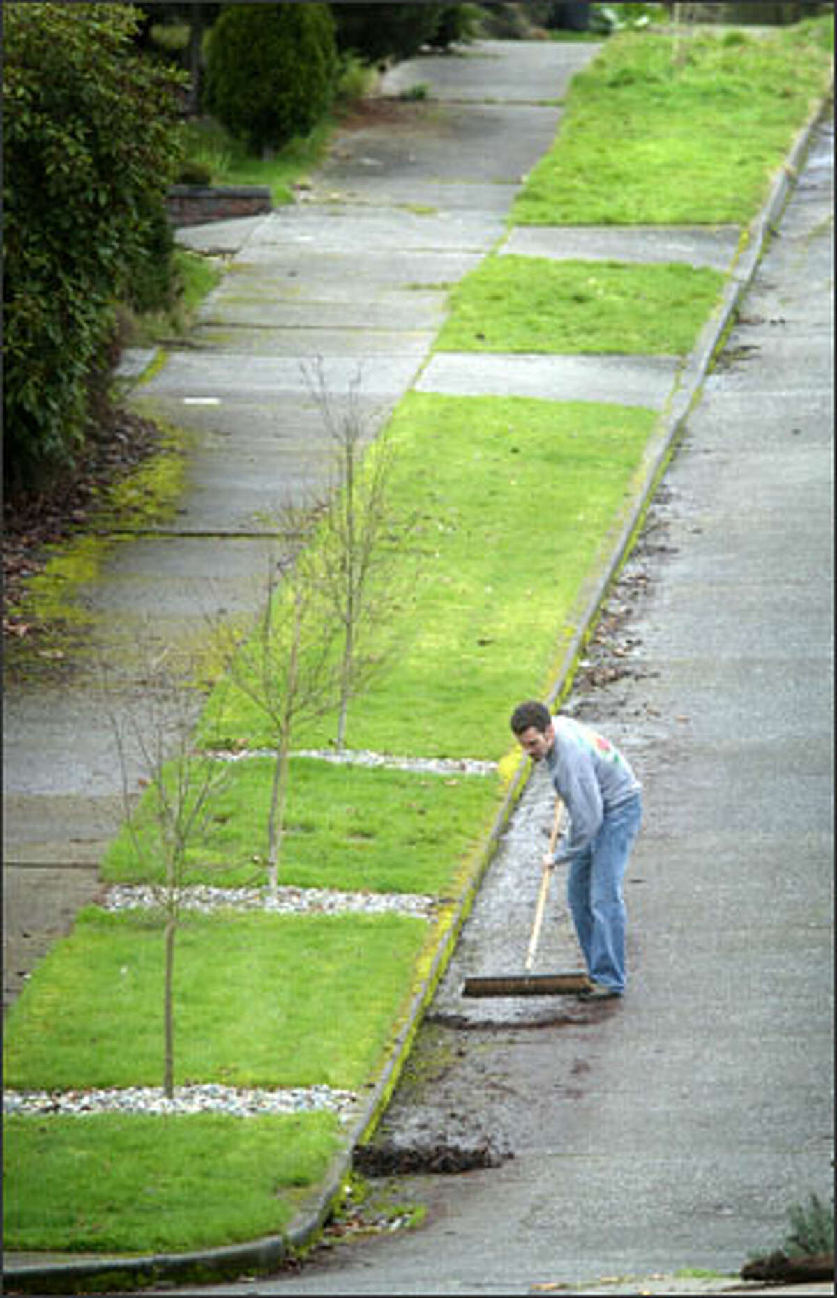 Chad Thompson takes advantage of a mild day to do some yard work and curbside cleanup in front of his home on South Oregon Street near Lake Washington in Seattle.