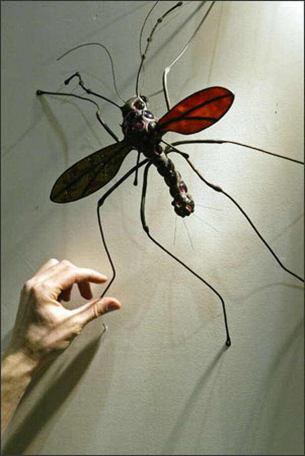 "Artist Sean Goddard of Tofino, B.C., adjusts the legs of one of his larger-than-life (45x) copper and glass mosquitoes Tuesday as he prepares his vendor stall at the Northwest Flower & Garden Show in Seattle. Goddard is proud of his moniker, ""The Bug Man."" Photo: Mike Urban, Seattle Post-Intelligencer / Seattle Post-Intelligencer"