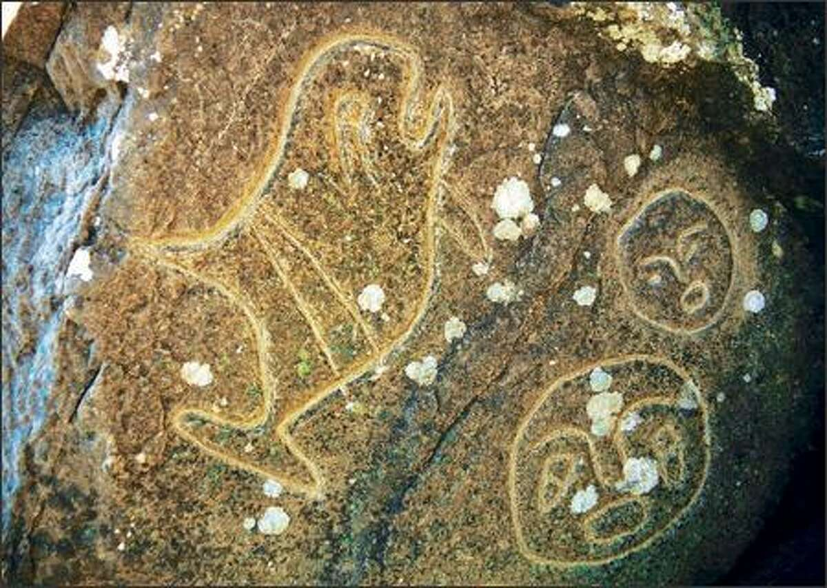 Native American petroglyphs adorn Wedding Rocks on the Pacific Coast south of Cape Alava in Olympic National Park.