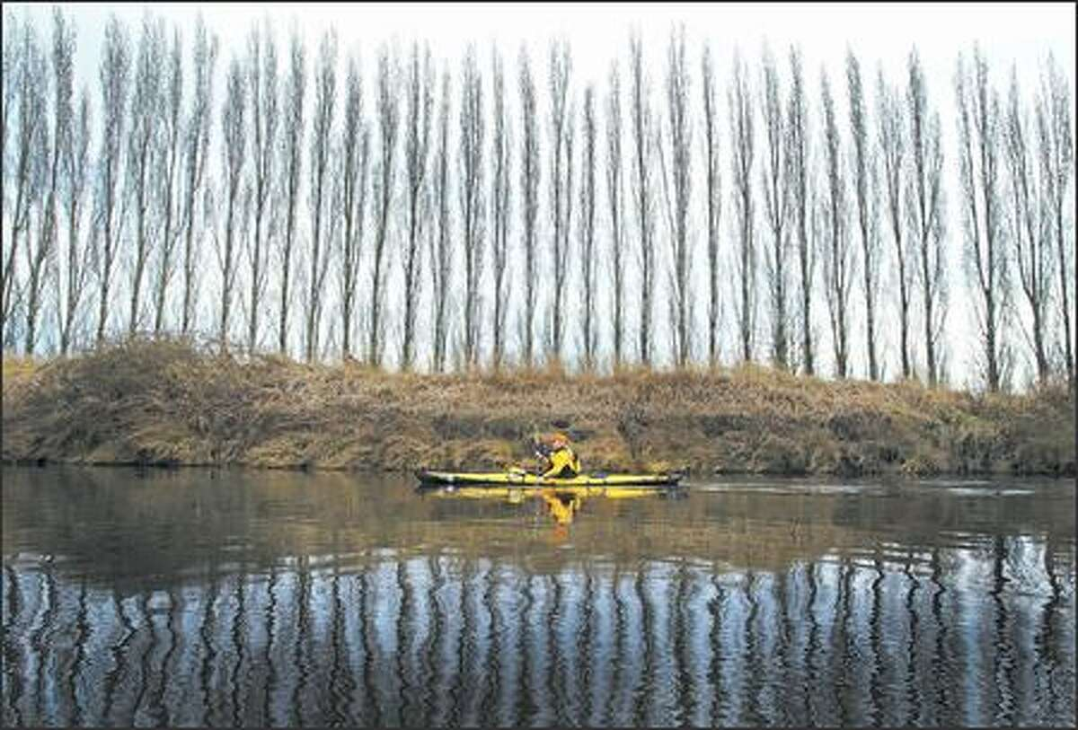 Reed Waite, executive director of the Washington Water Trails Association, paddles a stretch of the Sammamish River, also known to many as simply