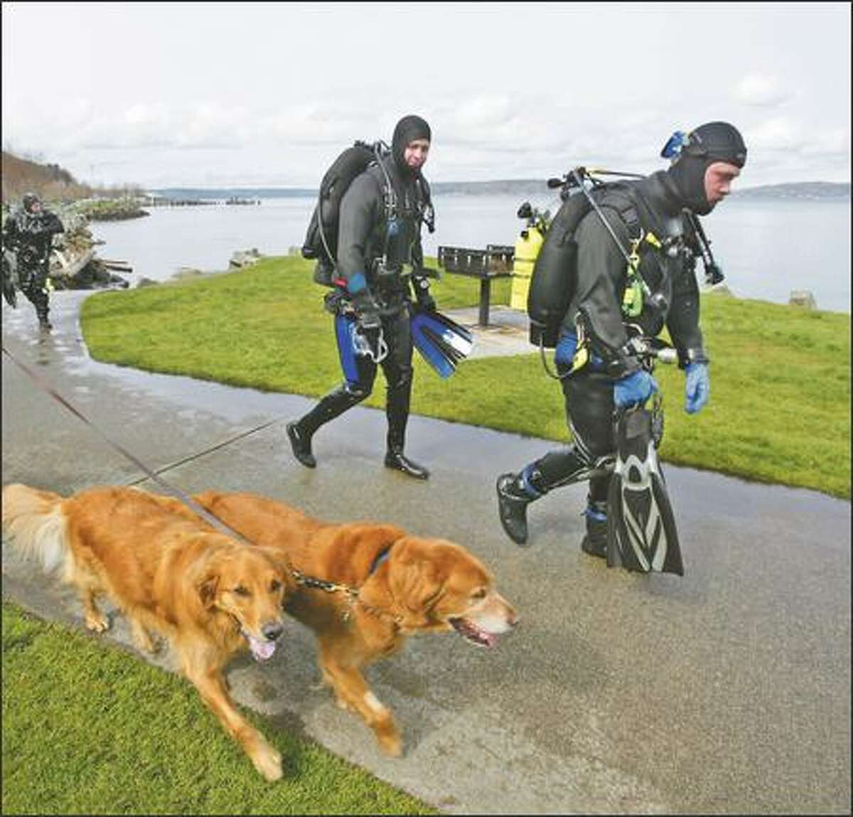 Scuba divers, from left, Chris Davenport and Arron Cummings, come ashore on Ruston Way in Tacoma.