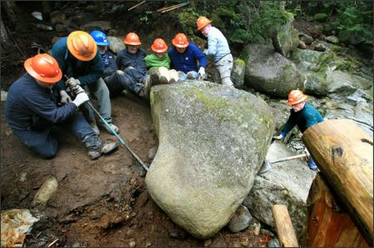 Washington Trails Association volunteers position a boulder to protect the base of Humpback Creek bridge, where a section of the trail was eroded by winter flooding.