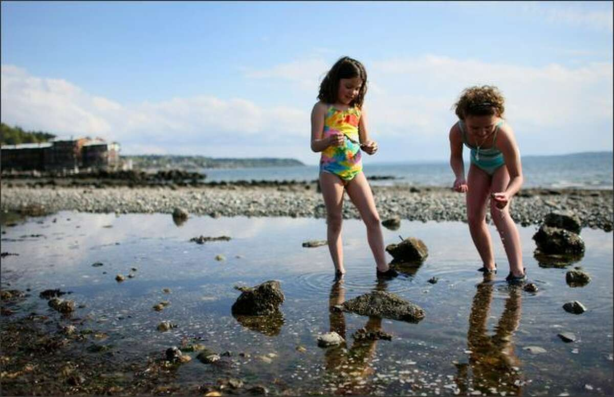 Brie Hobbs, 7, and her sister Shay Hobbs, 9, explore a tidal pool during a warm afternoon at Alki Beach Park.