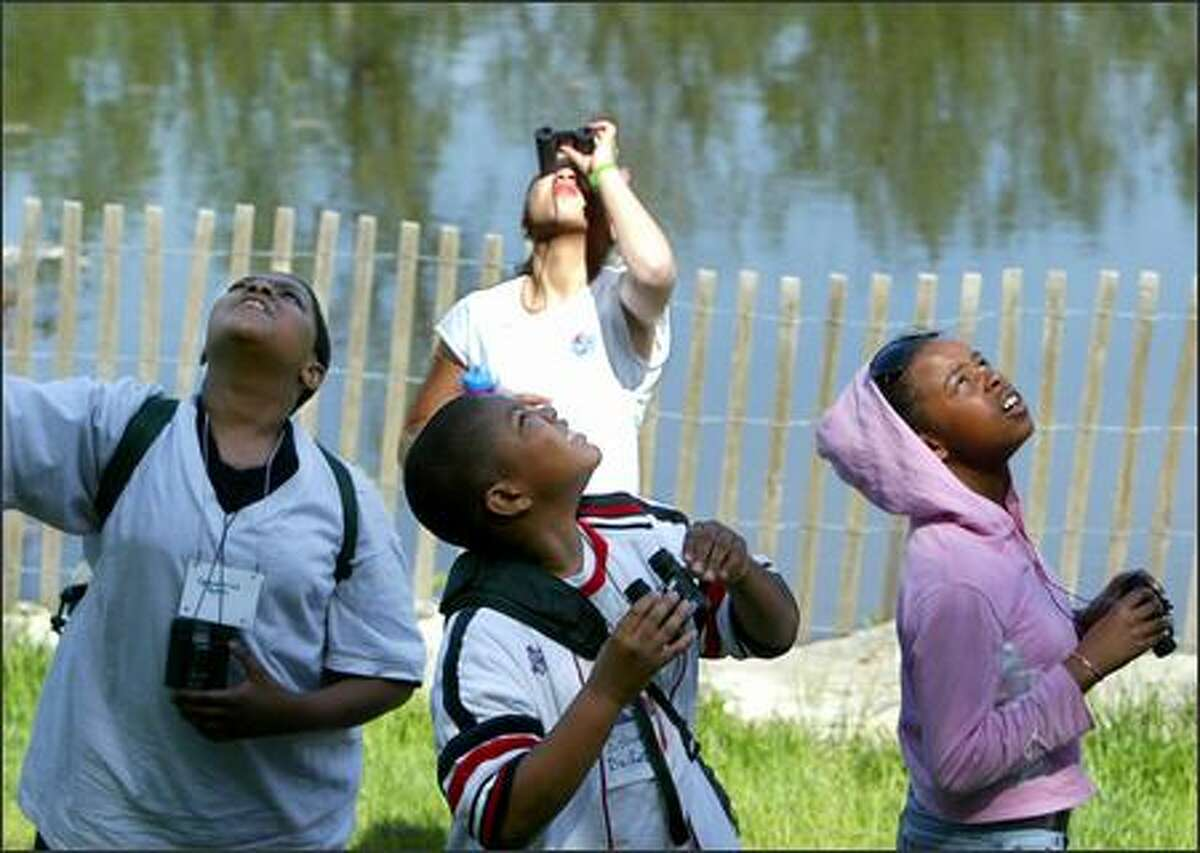 From left, fifth-grade students Demetrius Nunn, Kishaun Bailey, S'kaila Morrison and, at back, Kre'shawna Jones of the African American Academy look for different birds at the Arboretum on Thursday. The African American Academy, Seattle Audubon and The Links Inc. are joining to help fifth-graders learn more about birds and their habitat. The 10-session Explorers Program culminated with afield trip. The birders will test their newly acquired binocular and bird watching skills while exploring a new ecosystem.