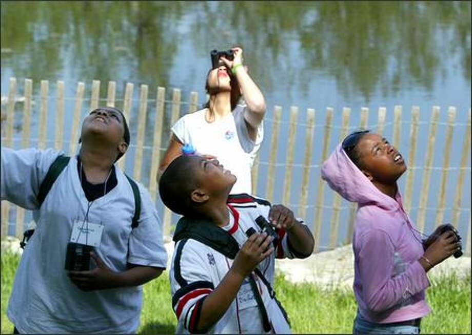 From left, fifth-grade students Demetrius Nunn, Kishaun Bailey, S'kaila Morrison and, at back, Kre'shawna Jones of the African American Academy look for different birds at the Arboretum on Thursday. The African American Academy, Seattle Audubon and The Links Inc.  are joining to help  fifth-graders learn more about birds and their habitat. The 10-session Explorers Program culminated with afield trip. The birders will test their newly acquired binocular and bird watching skills while exploring a new ecosystem. Photo: Scott Eklund, Seattle Post-Intelligencer / Seattle Post-Intelligencer