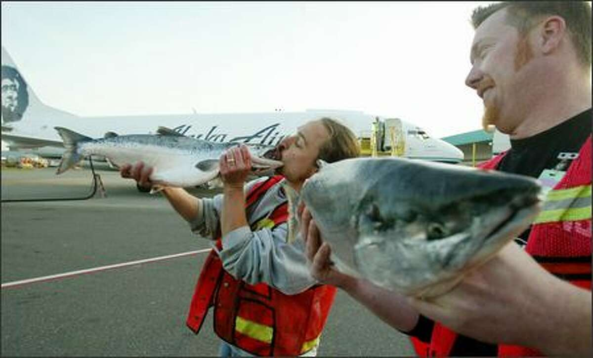 The first Copper River salmon of the season arrived at Alaska Airlines' freight terminal at Sea-Tac Airport Tuesday morning -- and received an enthusiastic greeting from Erik Espinoza, left, of Pike Place Fish Co. Co-worker Dan Bugge looks on at right. More than 160,000 pounds of the coveted fish arrived in Seattle from Cordova, Alaska, and then be shipped to cities across the country.